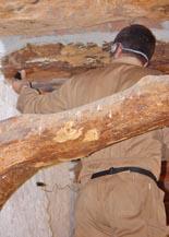 Tratamiento qu�mico de la madera