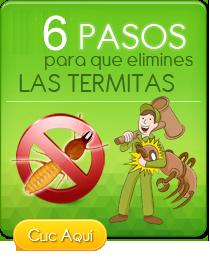 Termitas carcoma hormigas desinsectaci n - Exterminar hormigas en casa ...